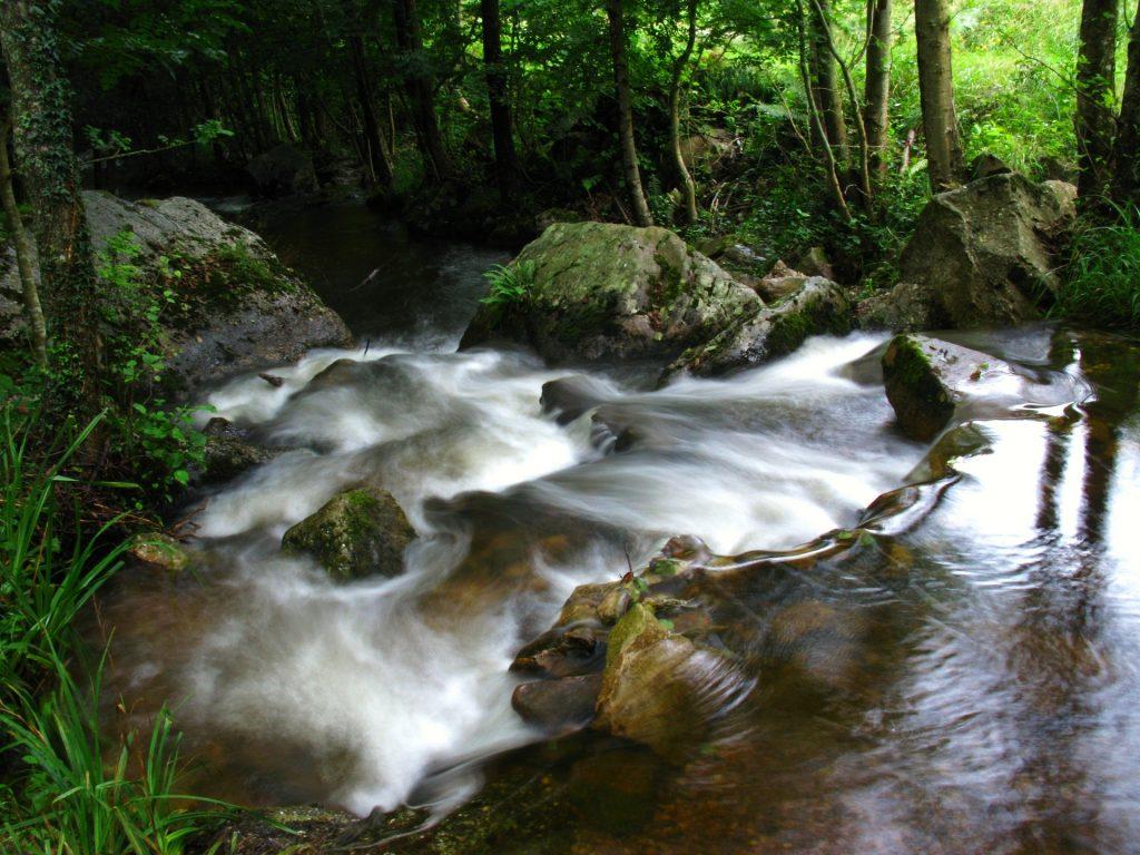 river-2696555_1920
