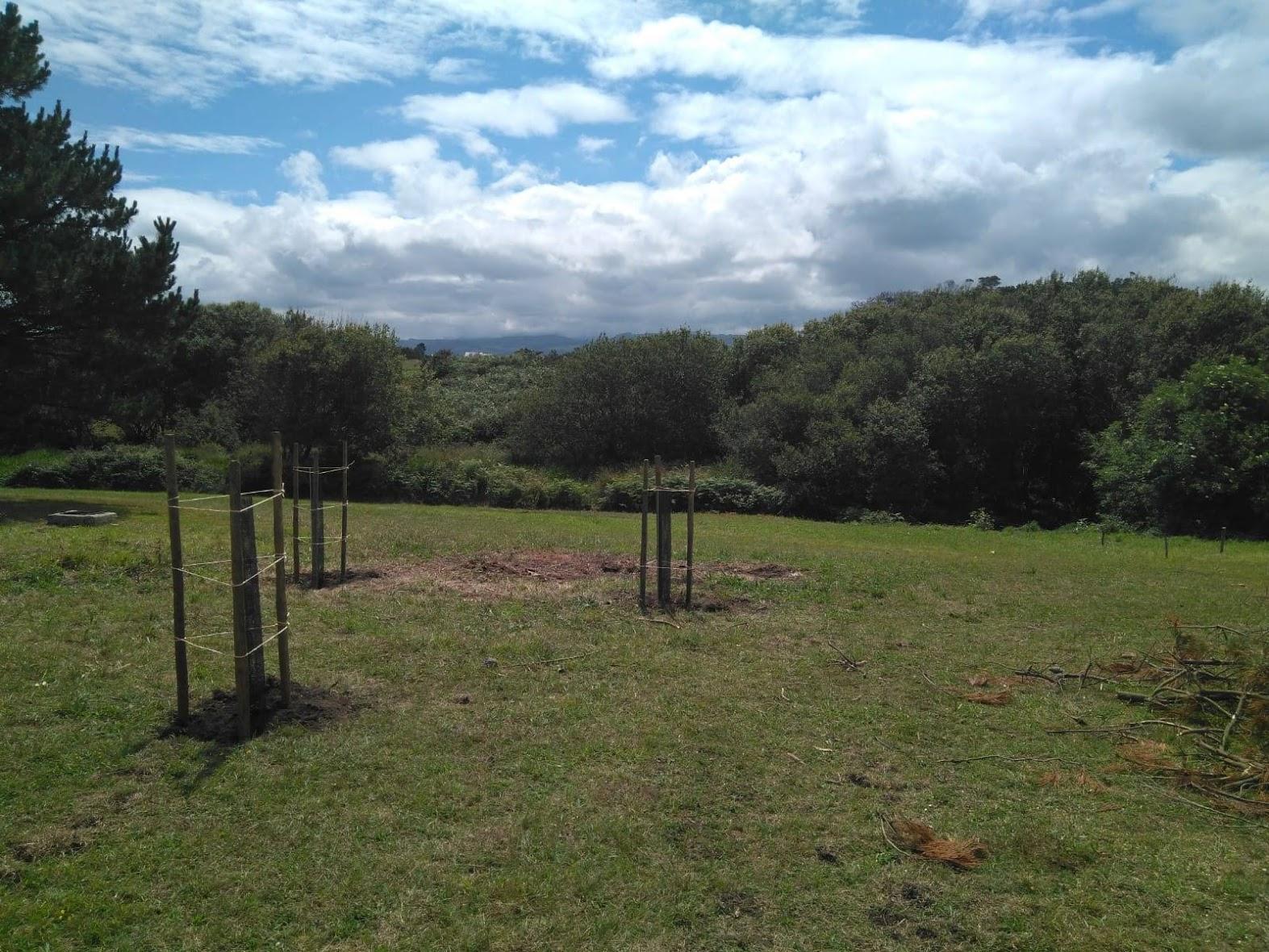 TRAGSA realiza plantaciones en las inmediaciones de la laguna de Arnao, Castropol