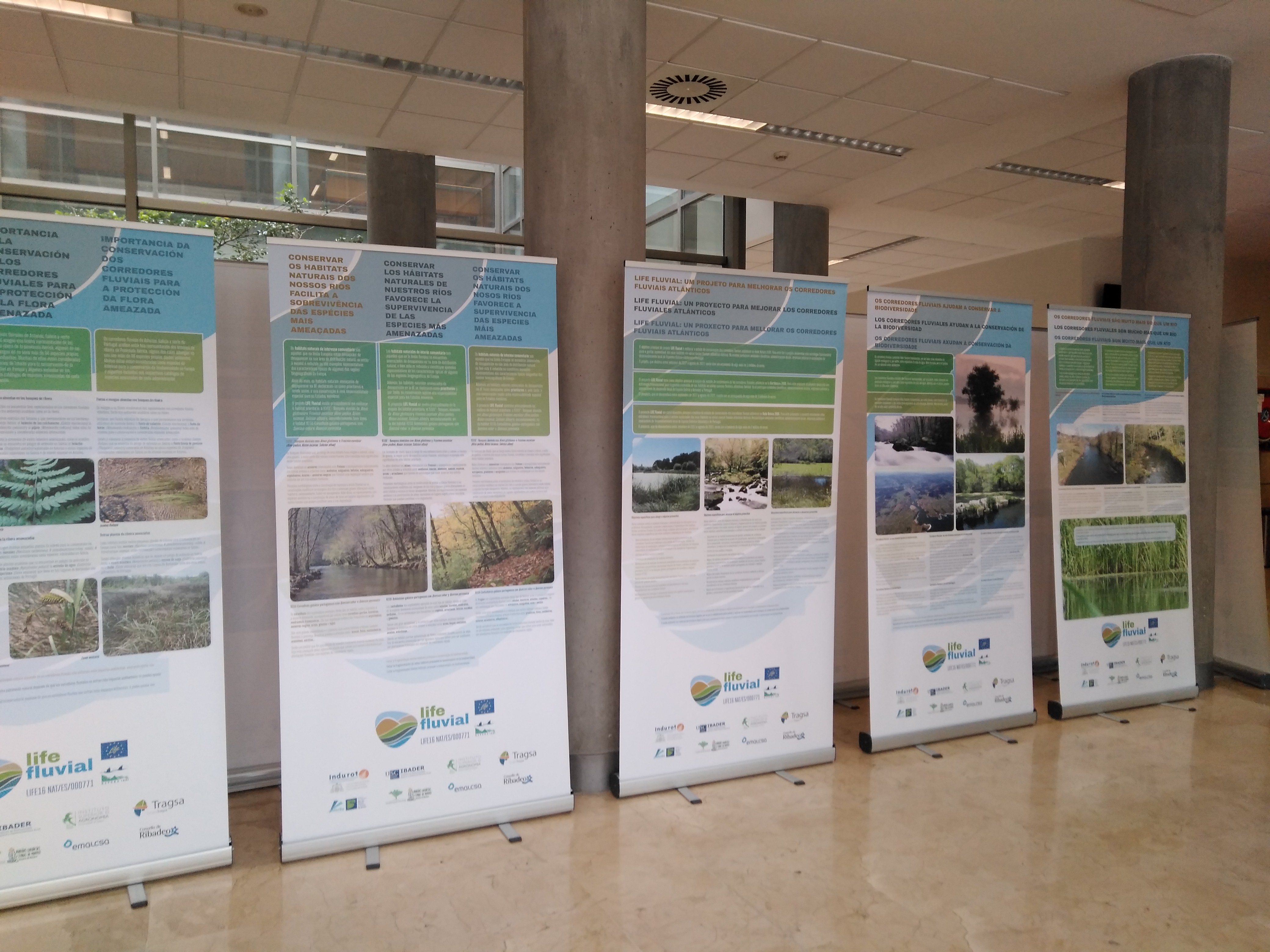 Exposición Itinerante del proyecto Life Fluvial en el campus de Mieres