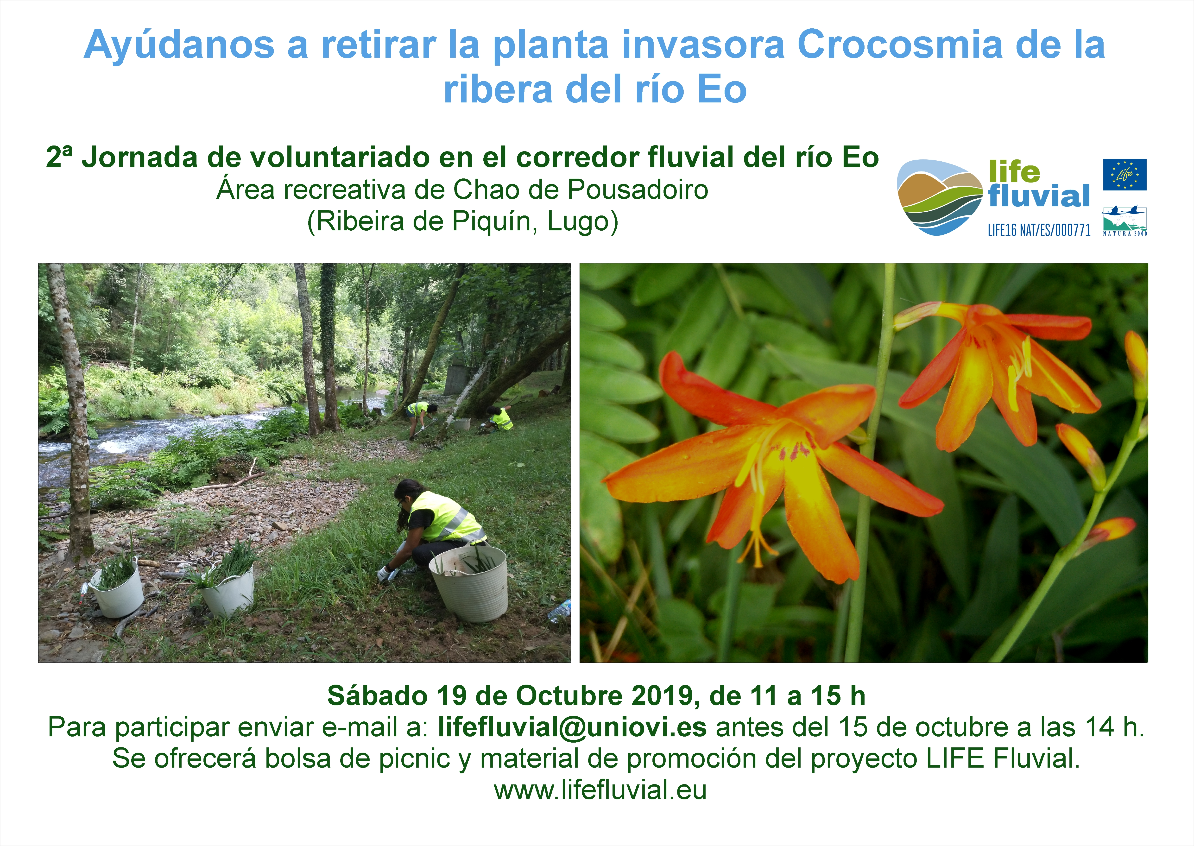 2ª Jornada de voluntariado en el corredor fluvial del río Eo
