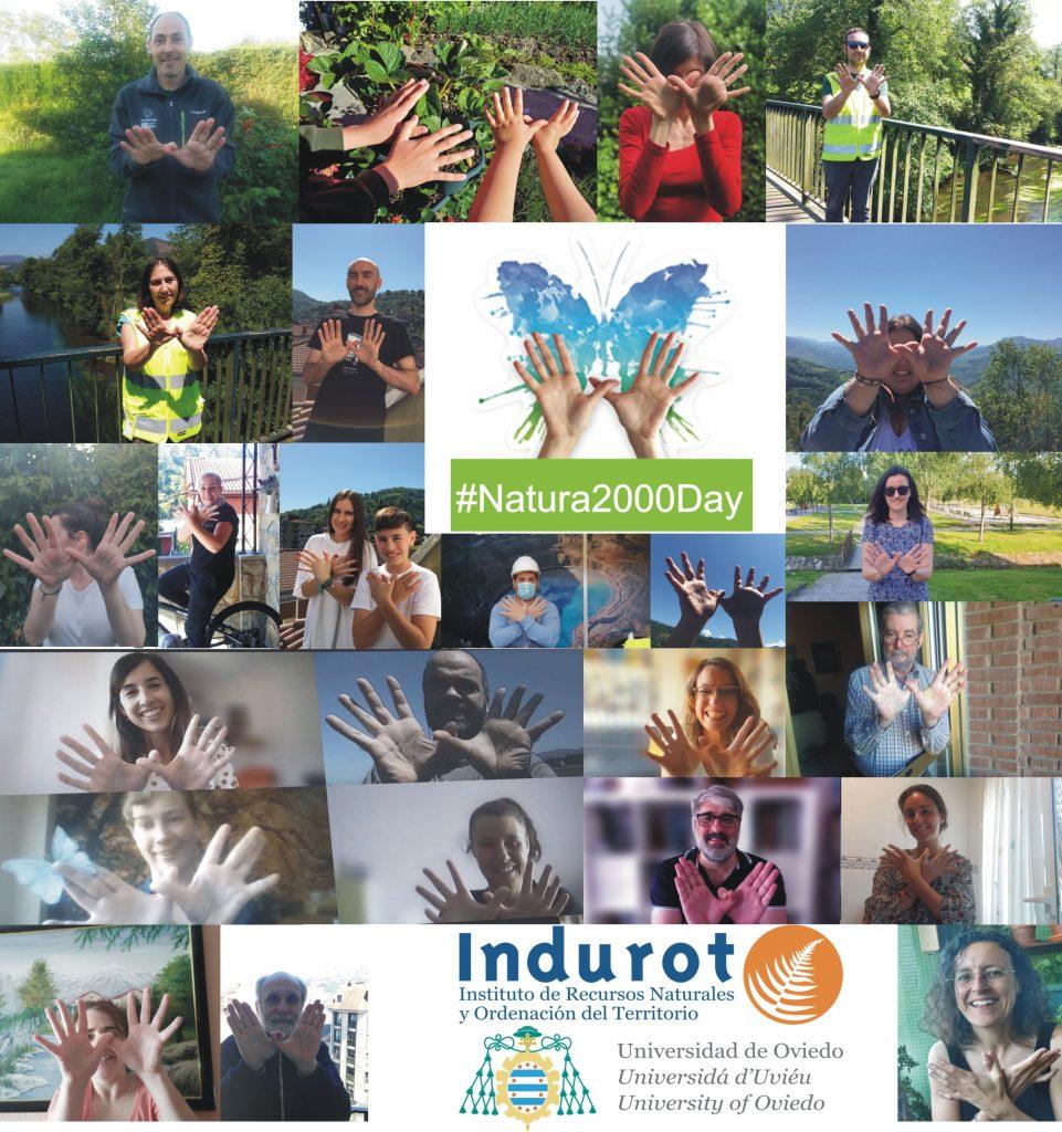 Collage_Indurot_mariposas