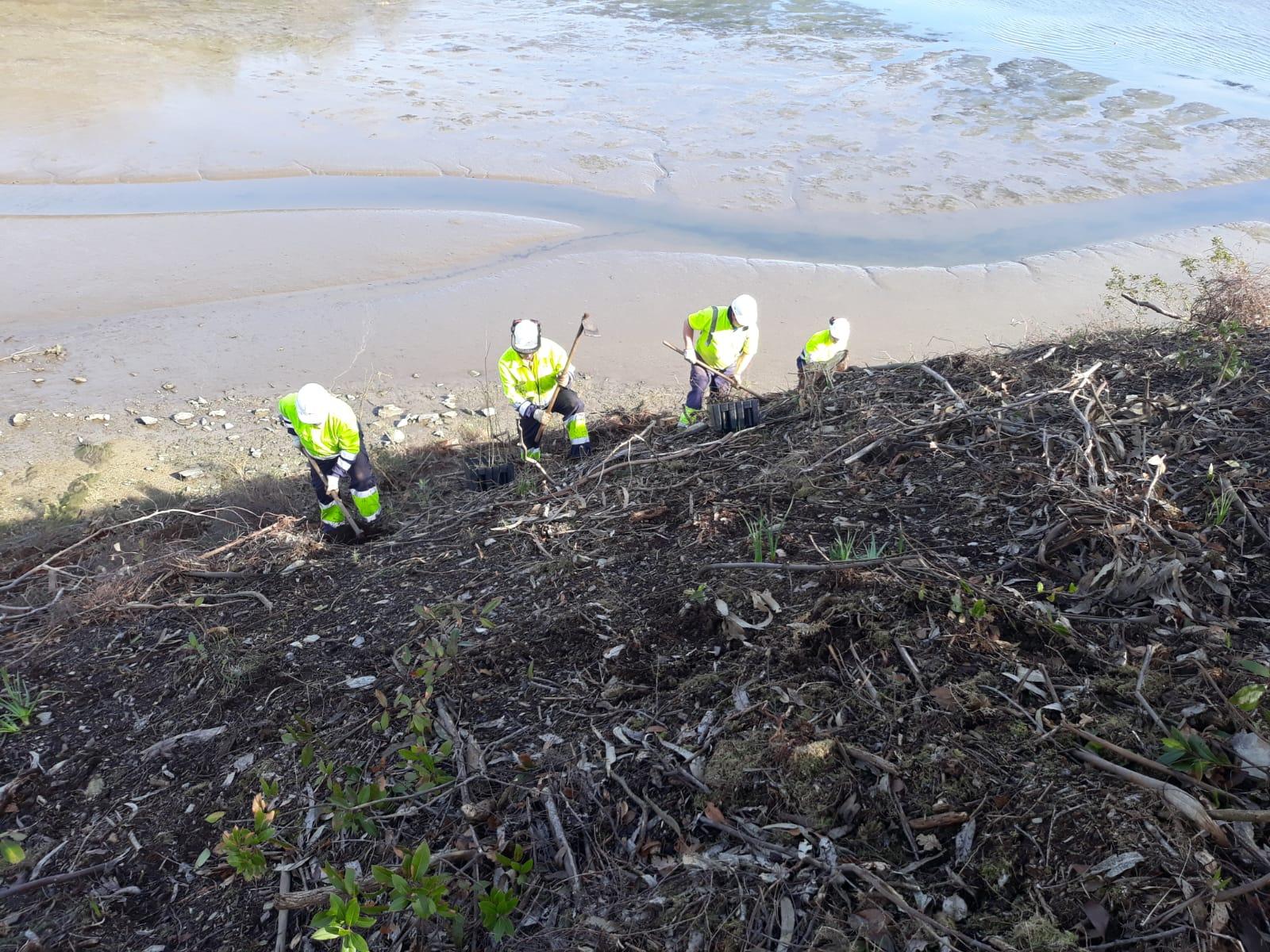 Continúan las acciones de restauración ambiental en la cuenca del río Eo