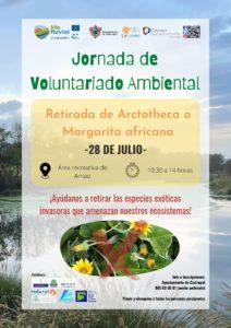 Jornada de Voluntariado Ambiental en Castropol - Retirada de Margarita africana @ Área recreativa de Arnao, Castropol | Principado de Asturias | España
